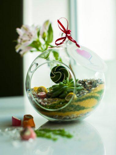 «Карамельный» флорариум