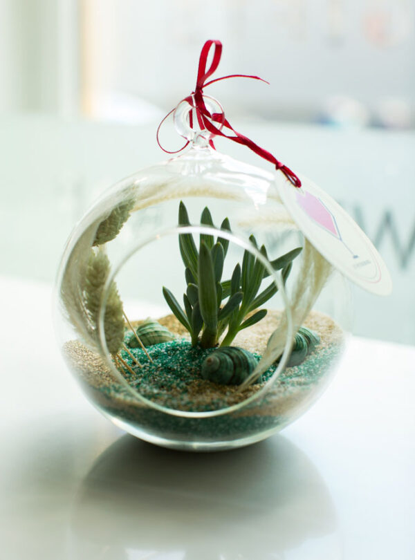 «Морской» флорариум от LUBLU