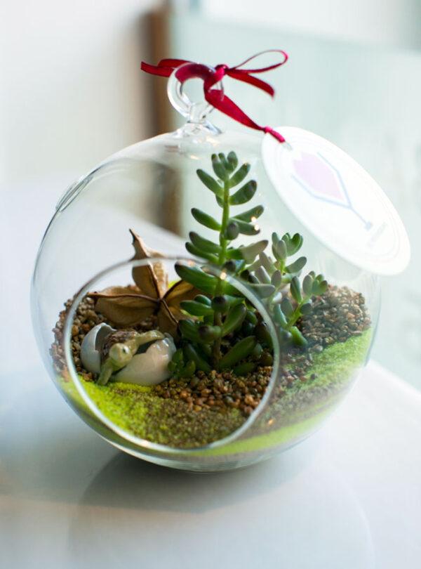 Флорариум с черепахой от LUBLU