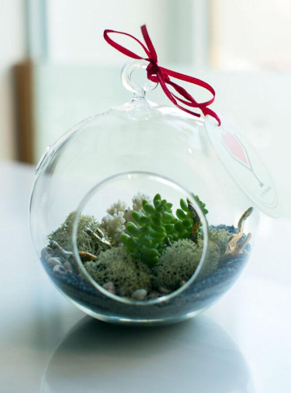 Флорариум с кораллом от LUBLU