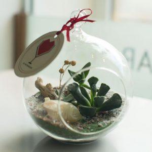 Флорариум с лягушкой от LUBLU